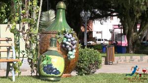 Festa-do-Vinho